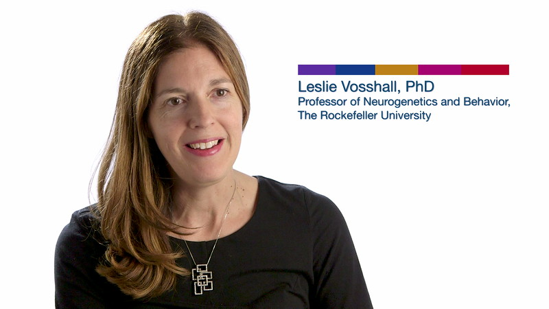 Society for Neuroscience - Why Do Mosquitoes Bite Us? / Leslie Vosshall, PhD (2018)