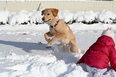 2009 Dec 24 - Snow in Lubbock