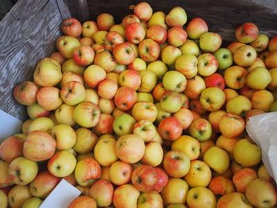 Hood River Fruit Loop - Oct 24, 2020