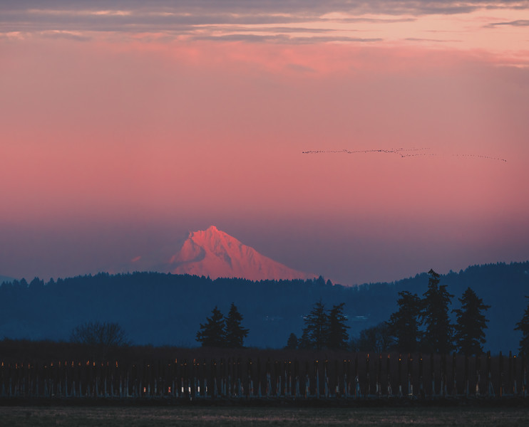 Mt. Jefferson in Sunset glow