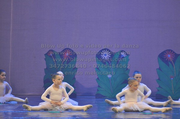Studio Danza Movimento In Matocci 2014