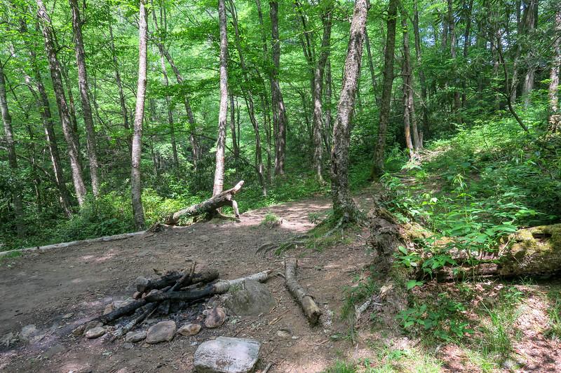 Greasy Cove-Big East Fork-Bridges Camp Gap Trail Junction -- 3,960'