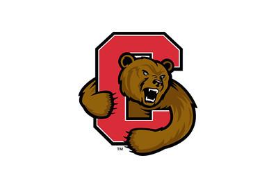 Cornell University (2009 - 2013)