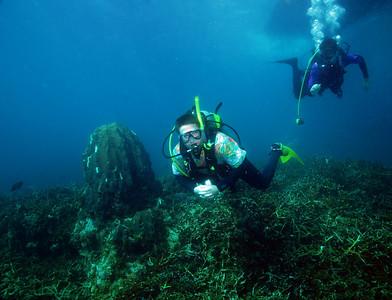 Diving, Roatan