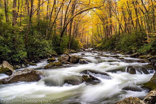 Big Creek SMNP North Carolina Fall 10-30-17