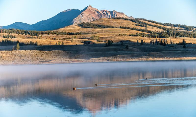 Swan-Lake-15.jpg