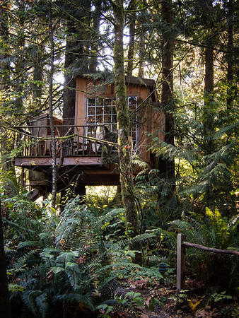 Treehousepoint