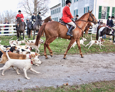 Blessing of the hounds 2011