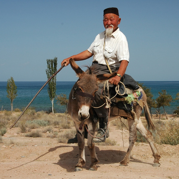 Kyrgyz Shepherd on Donkey - Lake Issyk-Kul, Kyrgyzstan