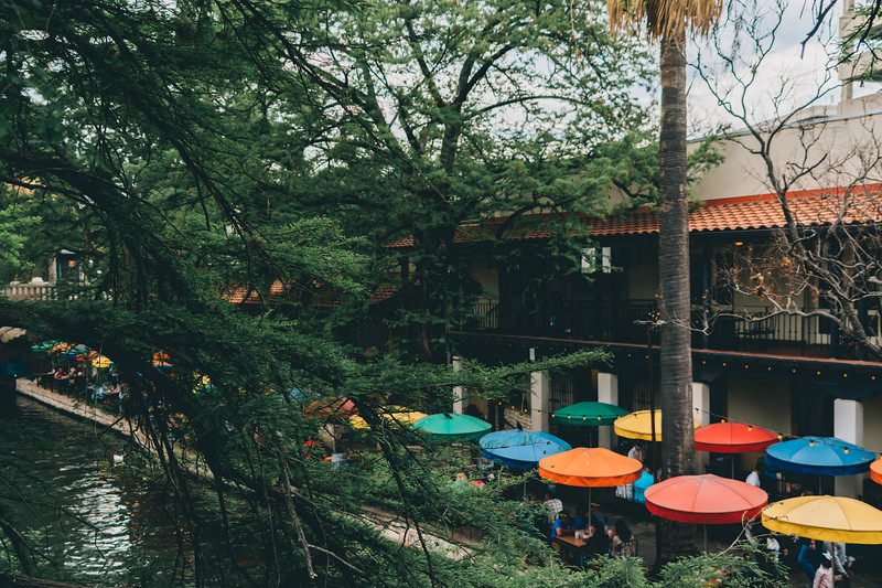 Casa rio umbrellas tree.jpg