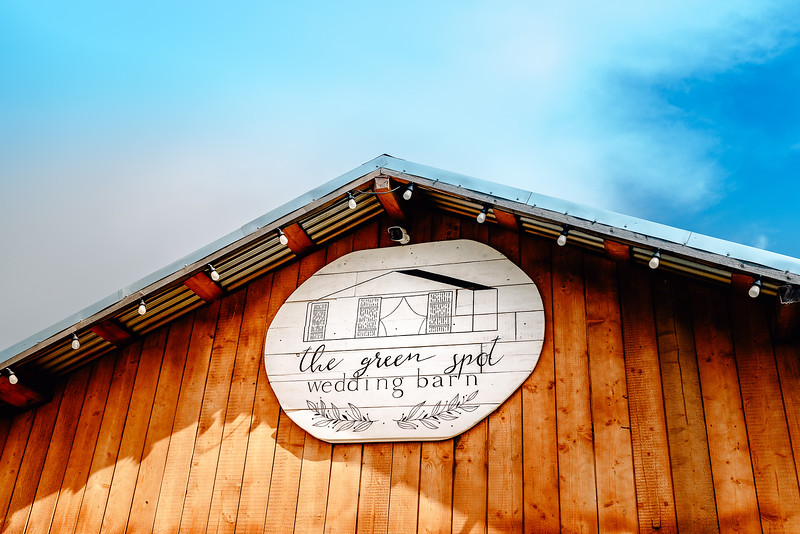 Nunta Green Spot Wedding Barn -51.jpg