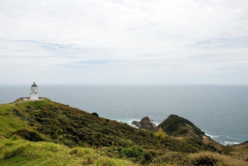NZ-5.jpg
