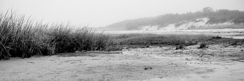 Misty Bayside View.jpg