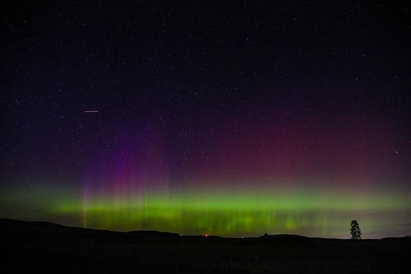 aurora's borealis.jpg