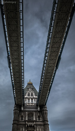 20140728_LION_LONDON (13 of 48)