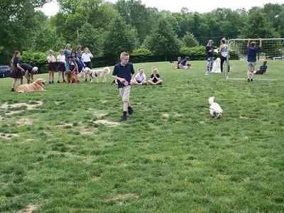 4th Grade Dog Show 2017