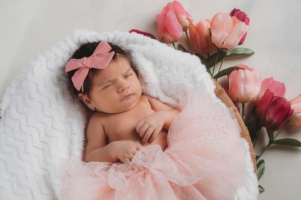 Charlotte Higgins - Newborn 2020