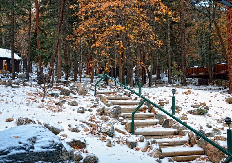 Camp de BennevillePines, Angelus Oaks CA