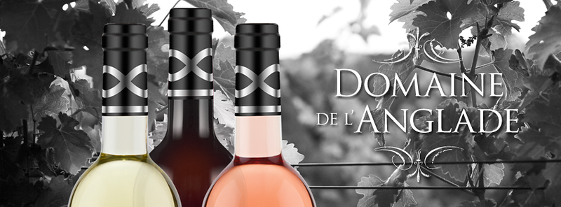 Domaine-FB-Header-2.png