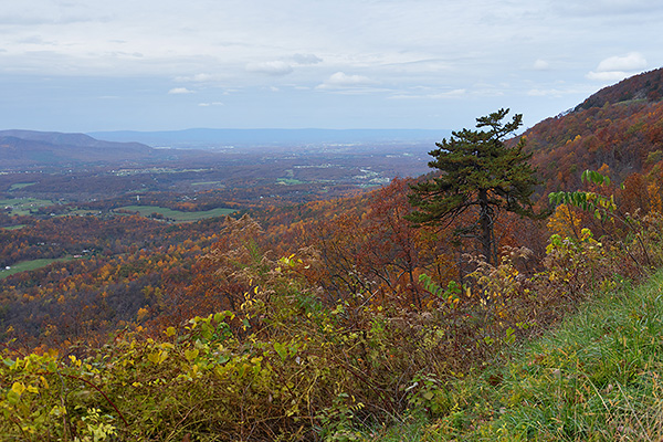 "Shenandoah Area, Virginia <br>October 27-30, 2012 <br><a href=""/SourceGalleries/2012/10-28-12/28184039_Ch5hzK"">View photos</a> <br> <i>A long weekend of hiking in the autumn splendor of Shenandoah National Park, <br>then hunkering down in the valley to weather Superstorm Sandy!</i> <p> </p><hr>"