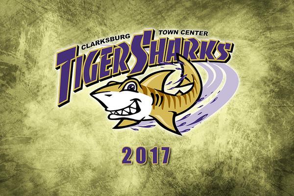 CTC Tiger Sharks 2017