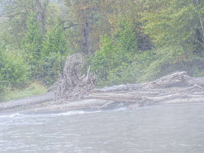 9-16-17 Bella Coola - River Drifting Sights - Great Bear Chalet