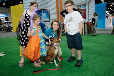 NAVC Bark in the Park - Adoption Fair