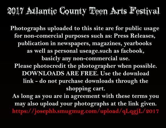 2017 Teen Arts Festival
