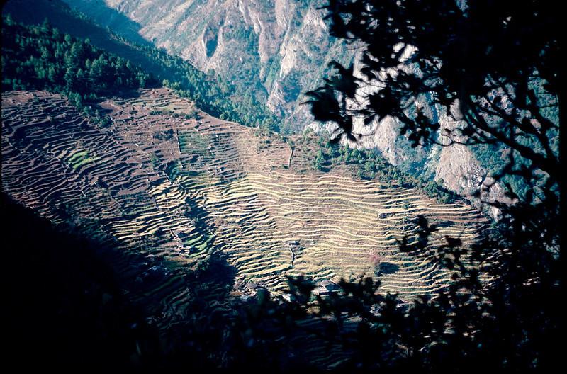 Nepal1_138.jpg