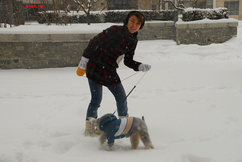 [20100103] 1st 2010 Snow in Beijing (10).JPG