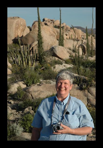 Desert Scene in Baja.jpg