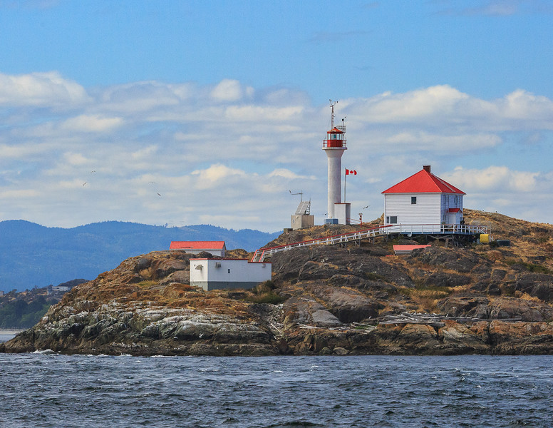 Trial Island Lighthouse 2-.jpg