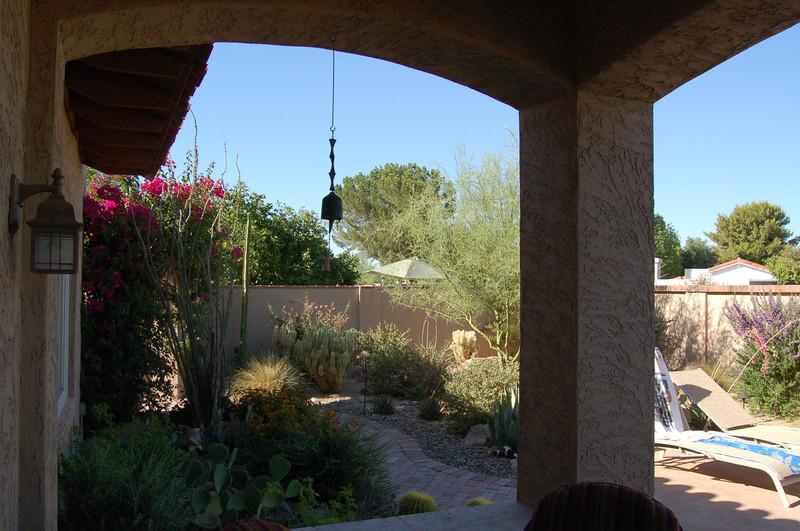 20120607_Scottsdale Back Yard_023.JPG