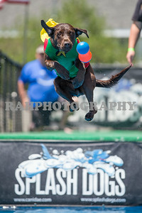 Splash Dogs Heritage park 07-27-2014
