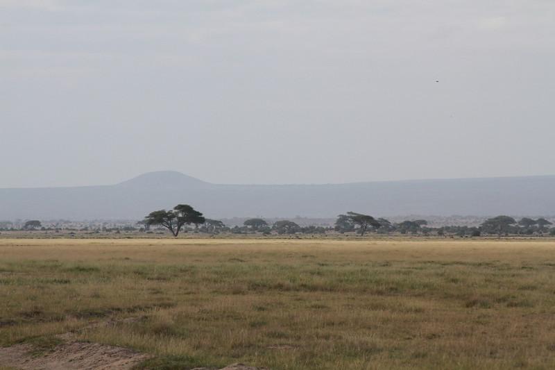 Kenya 2019 #2 573.JPG