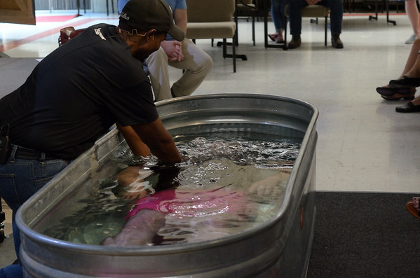 2018 July Hi-Crest Baptisms