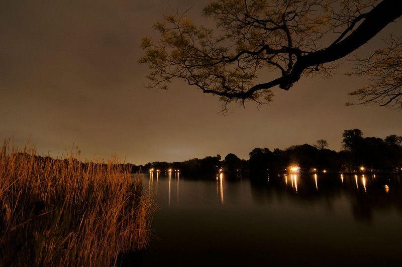 DSC_7489_prospect_park_lake_at_night_lg.jpg