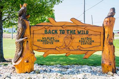 2015/05/22AM3 Castalia: Back to the Wild