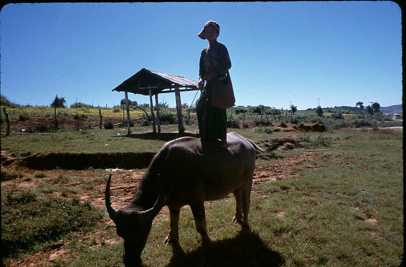 Myanmar1_099.jpg