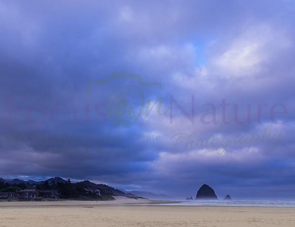 Oregon Coast Gallery