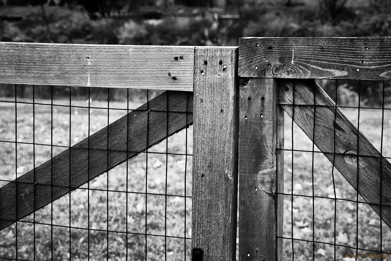 Fence Mending
