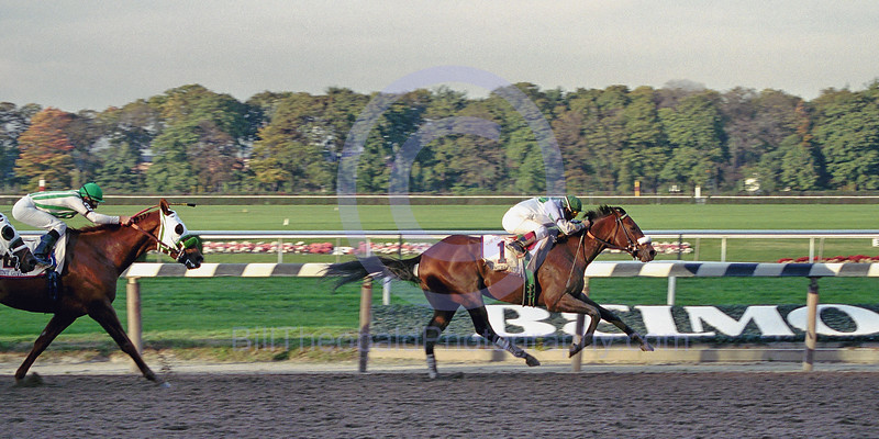 2000 Champagne Stakes.  AP Valentine defeating Point Given at Belmont Park.