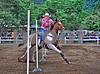 gymkhana dela county fair 2014 293smug