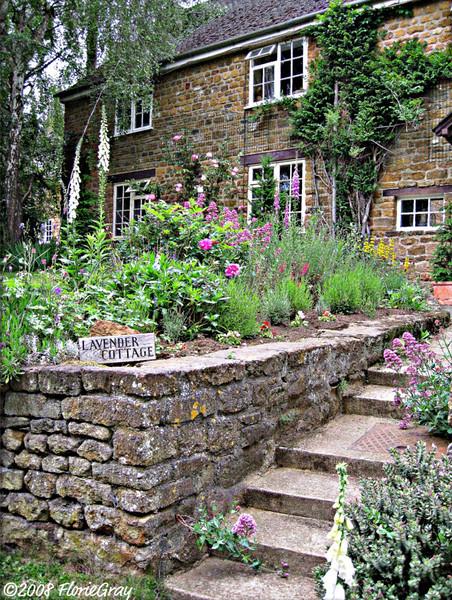 Lavender Cottage; Wroxton, Oxfordshire   ©2008 FlorieGray