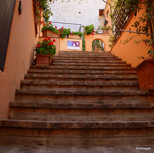 Assisi II