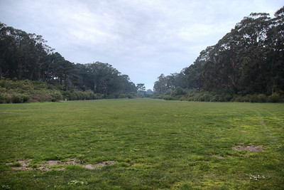 The Length of Golden Gate Park
