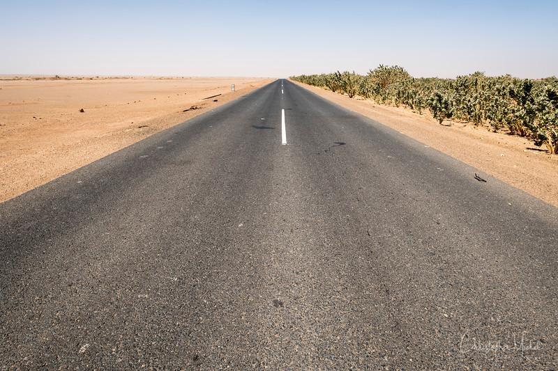 2-3-17228925Meroe-Bayuda Desert-Karima.jpg