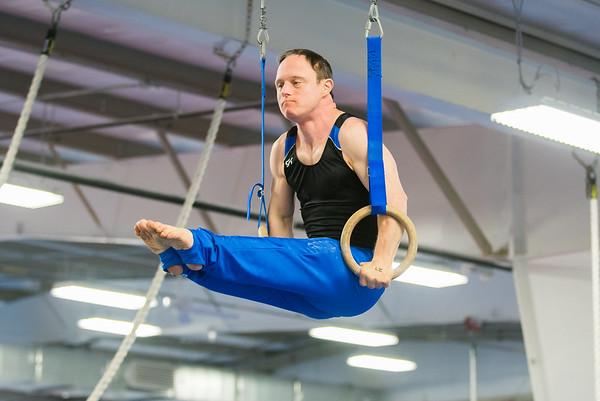 2017 Gymnastics