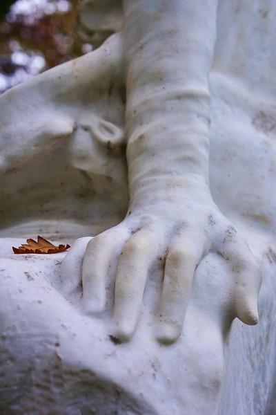 Paris Hand 0989.jpg