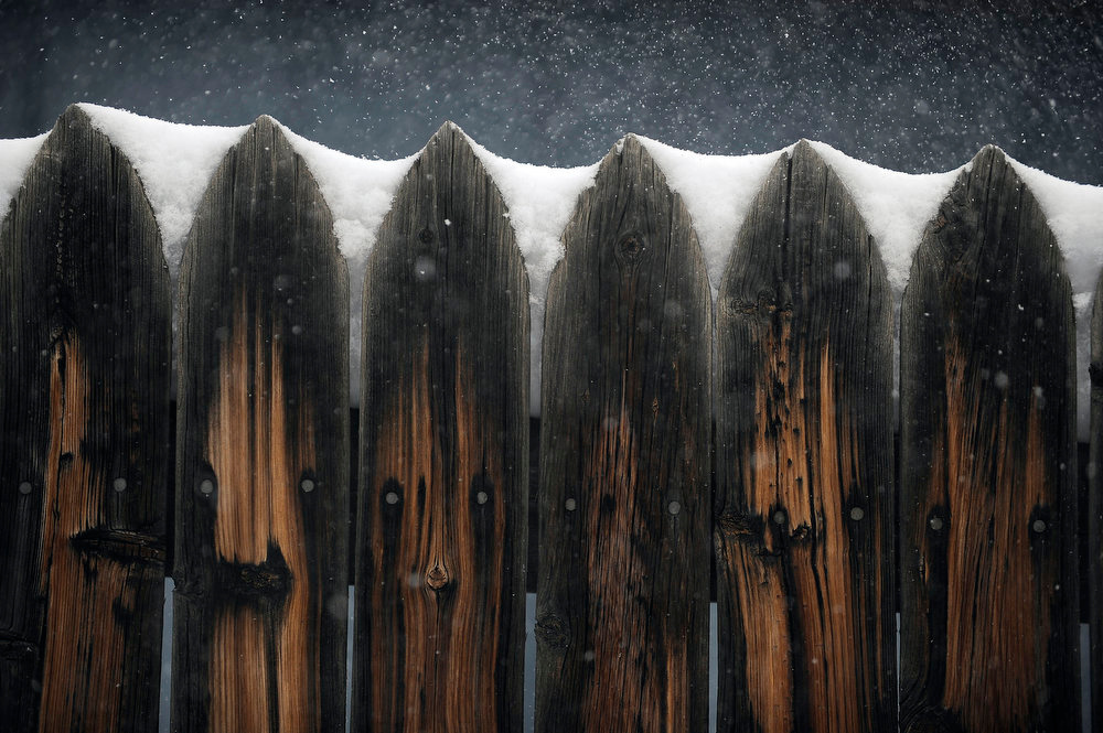 . Snow rests between the boards of a fence on Tennessee street on Sunday, February, 24, 2013. Seth A. McConnell, The Denver Post